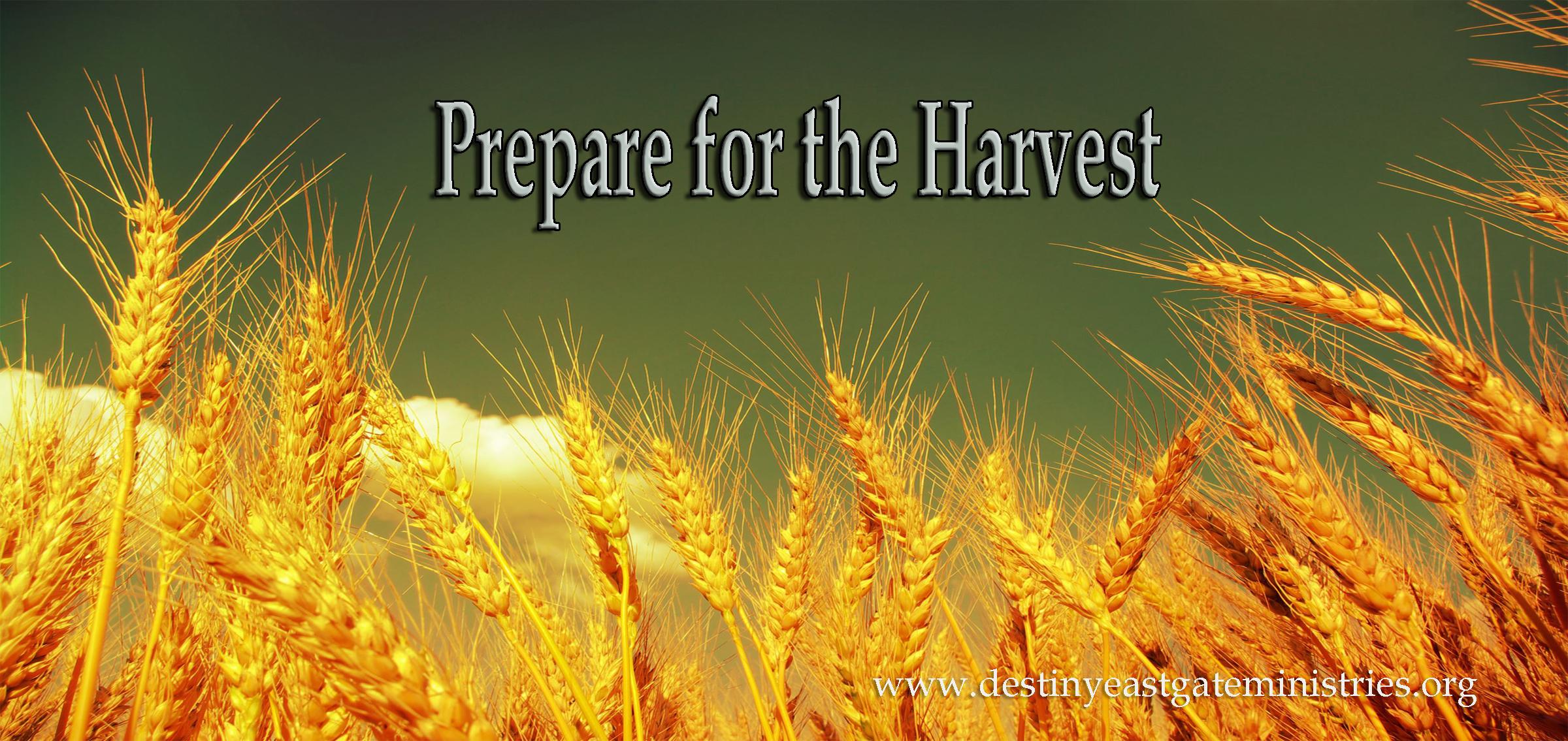 harvest 2020x1269px 581 82 - photo #4