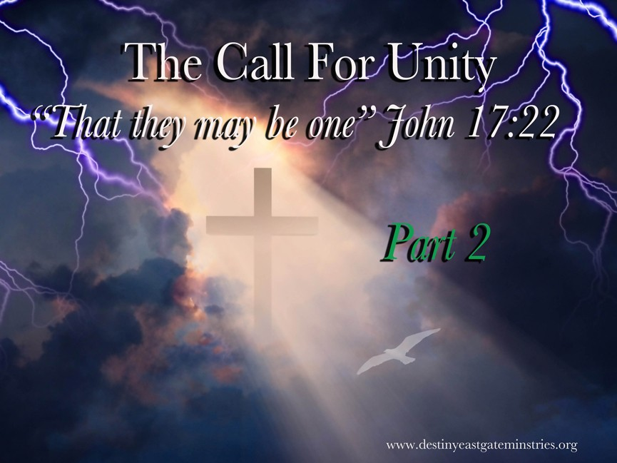The Call for unity2