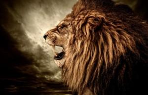 S Lionl