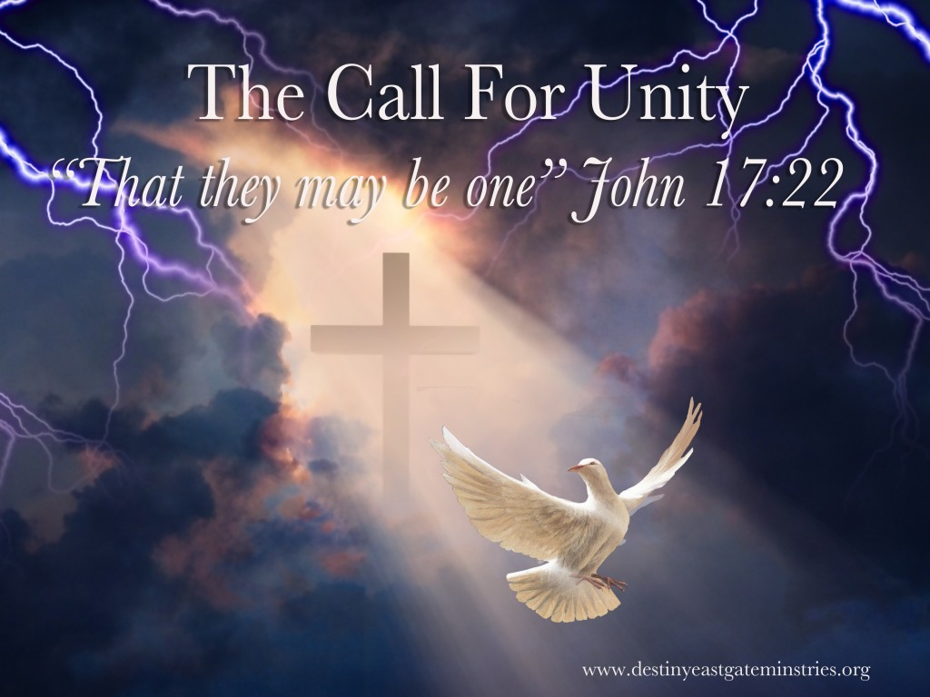 The Call for unity