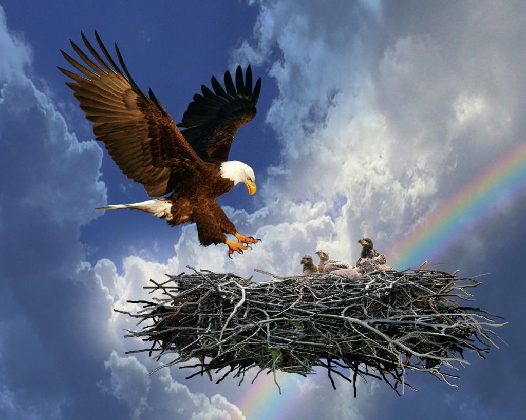 Eagles Nest | | Destiny Eastgate Ministries